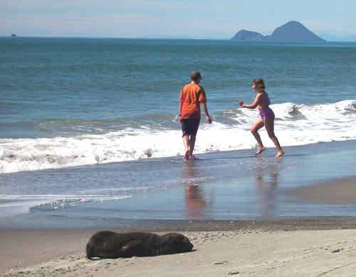 Kids and seal pup