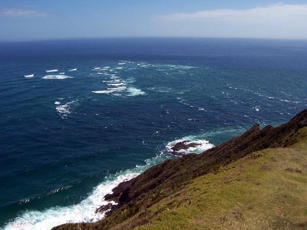 Cape Reinga Bus Tour Northland Bay Of Islands