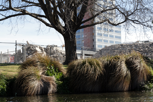 Punting on Avon River, Christchurch NZ after the earthquakes