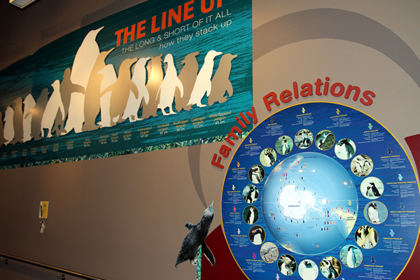 International Antarctic Centre, Christchurch NZ after the earthquakes