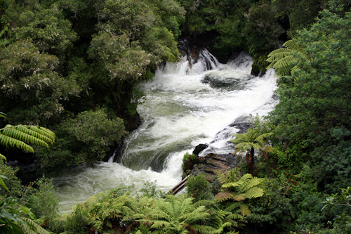 Okere Falls, Bay of Plenty, NZ