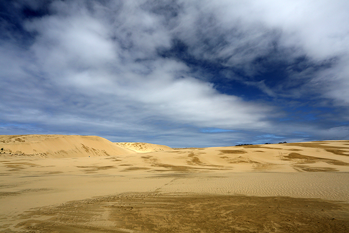 Te Paki Sand Dunes, Far North, NZ.